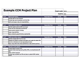 CCM Project Plan